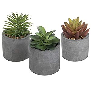 Silk Flower Arrangements MyGift 5-Inch Artificial Assorted Echeveria Succulent Plants in Modern Gray Cement Planters, Set of 3