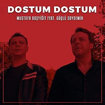 Dostum Dostum (feat. Güçlü Soydemir)
