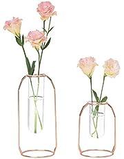 LS Hyindoor 水耕栽培花瓶 金属枠 透明 ガラス花瓶 テラリウム容器 試験管花瓶 2個入 植物ポット フラワーベース ローズゴールド