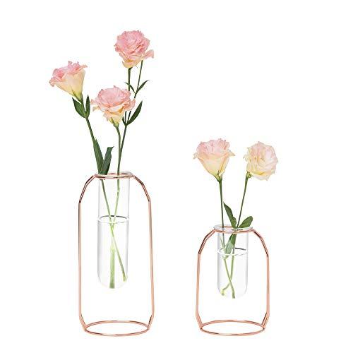 Hyindoor Florero Cristal de Tubo Ensayo Hidropónico con Marco Metal de Oro Rosa Juego de 2 jarrones Porta Flores Decorativos para Bodas, Hogar, Fiesta