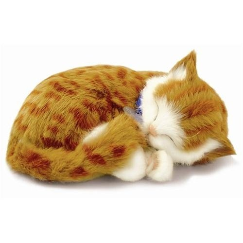 Realistic Cat Stuffed Animal Amazon Com