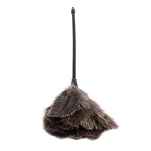 Plumero Plumero - Mini Plumero de Plumas de Avestruz Reutilizable Lavable Hecho a Mano para Libros, Teclado, Oficina, casa, Plumero de Plumas de Avestruz...