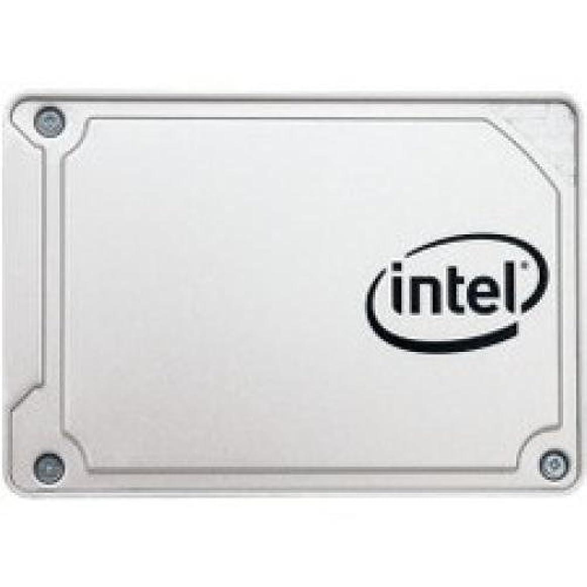 侵略泥棒宝Intel SSD SSDSC2KF256G8X1 5450s 2.5 256GB SATA 6Gb s 3D2 TLC Single Pack RTL [並行輸入品]