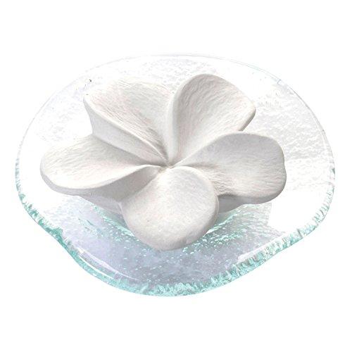 PRIMAVERA Duftstein Frangipaniblüte auf Glasteller transparent - Keramik, Raumduft, Diffusor - Aromatherapie
