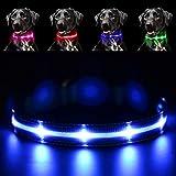 PAWOW Collar de Perro, Collar Perro LED Luminoso, Collar Mascota, LED de 3 Modos, USB Recargable, Ajustable y Impermeable, Más Visible y Seguro, Tiene un Cable de Carga(Nylon, Azul)
