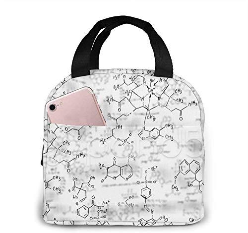 Bolsas de almuerzo con patrón de ecuación de química para mujeres, caja de almuerzo con aislamiento portátil, bolsa refrigeradora, bolsa Bento para viajes/picnic/trabajo