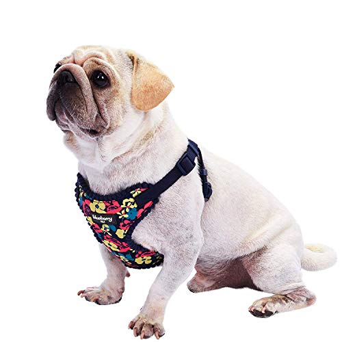 """Blueberry Pet 5 Patterns Soft & Comfy Made Well Profound Floral No Pull Mesh Dog Harness Vest in Navy Blue, Chest Girth 17.5""""-21"""", Small, Adjustable Harnesses for Dogs"""