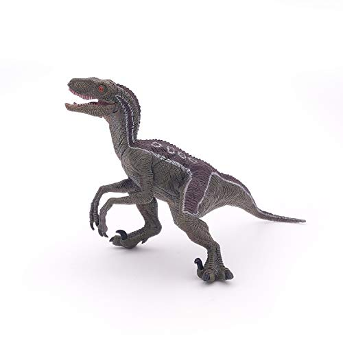 Papo- Figura Dinosaurio Velociraptor 7X9,8X9,5CM, Multicolor, 17 cm Lang (55023)