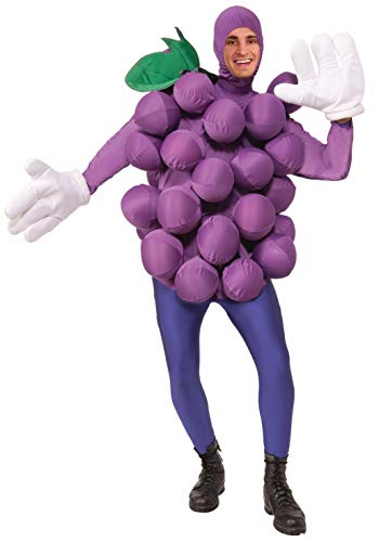 Forum Novelties Purple Grape Costume for Adults - Fruit Costume - One Size