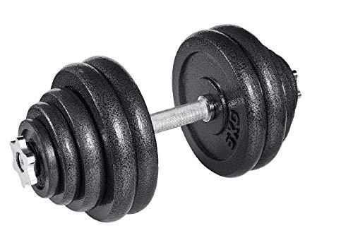 arteesol Manubrio, Manubri Manubri in Ghisa Manubri 10 kg 15 kg 20 kg 30 kg perPersone di Fitness Professionale (1x30kg)
