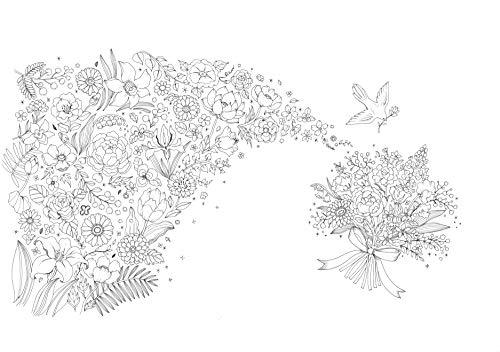 新装版ぬり絵花のさんぽ道―世界のうつくしい花と風景