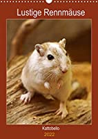 Lustige Rennmaeuse (Wandkalender 2022 DIN A3 hoch): Liebenswerte Heimtiere (Planer, 14 Seiten )