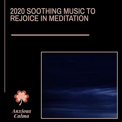Ambient 11, Zen Town, Sacred Divinity, Divine KaHiL, Ultra Healing, Dr. Krazy Windsor, Platonic Melody, Serenity Calls, Sanct Devotional Club, Dr. Yoga, Power Diggers, Mystical Guide, Chinmaya & RauDrAE