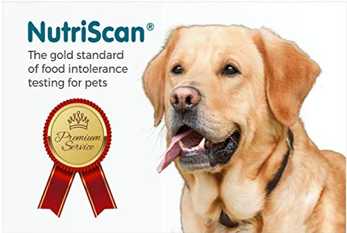 at-Home Pet Food Intolerance and Sensitivity Test for Dogs