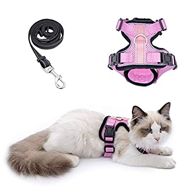 Amazon - Save 30%: Cat Harness and Leash for Walking, Outdoor Escape Proof Pet Vest for Cats, S…