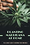 Planting Marijuana At Home: The Ultimate Guide To Growing Your Own Weed: How To Grow Your First Weed Plant