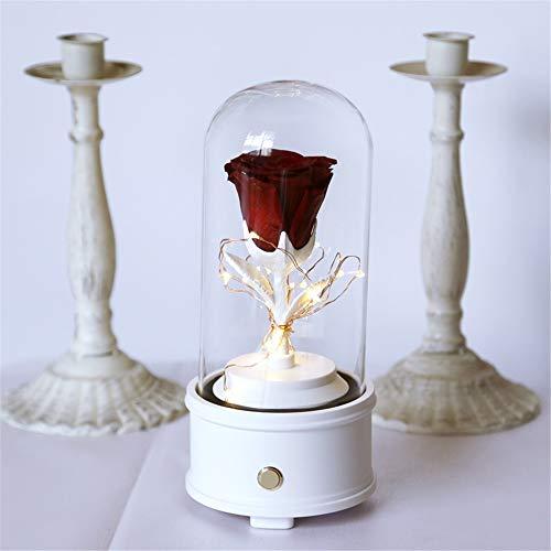 Geconserveerde verse bloem roos bedlampje unieke dag de magische bloem LED-nachtlampje muziekspeler vriendin geschenken vrouwelijk Bluetooth luidspreker Valentijnsin in de glazen koepel hand