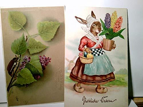 Set 2 x AK farbig. 1 x Fröhliche Ostern gel.1931, Hasenmutter mit Eierkörbchen + Hyazinthen Schale, 1 x Fliederzweig mit Maikäfer gel. 1911