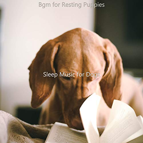 Bgm for Resting Puppies
