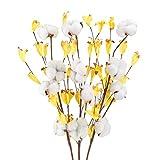 HUAESIN 3PCS Fleurs Coton Naturelles 4 Têtes Tiges Coton Naturelles Fleur de Coton Sechee Artificielle Fausse Fleur de Coton Branche Coton Décoration 3pcs pour Balcon Mariage Table Composition Floral