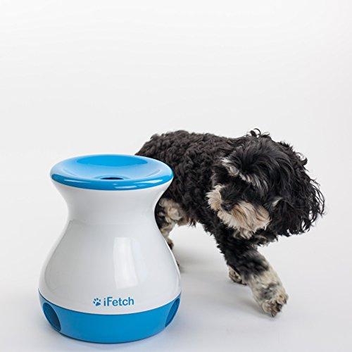 iFetch Frenzy Fetch Toy For Dogs