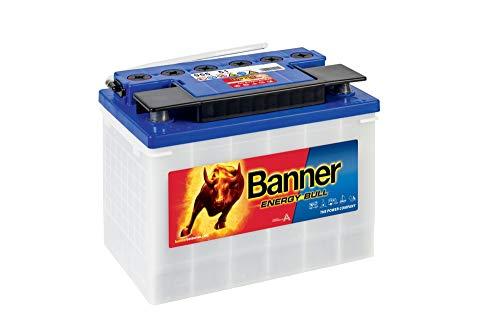 Bannière 95551 Pot Boîte d'énergie 678 Bull par Inadvertance et Backfire protégé Leisure batterie