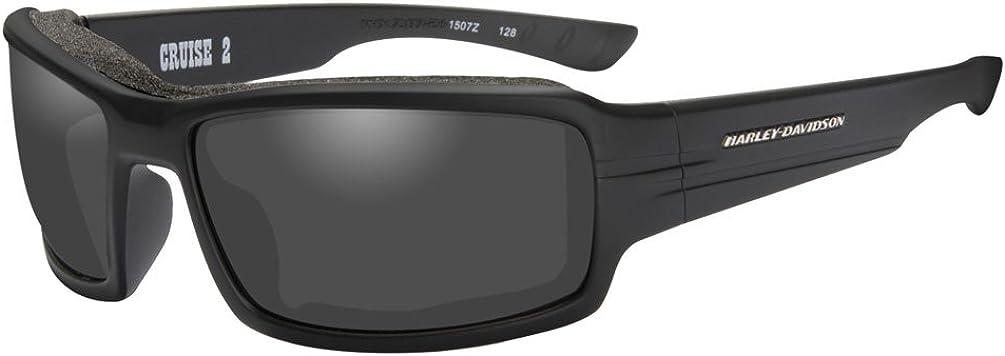 Harley-Davidson Men's Cruise 2 Gasket Sunglasses, Gray Lens/Black Frames HACRS01