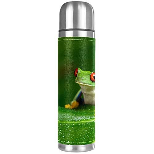 Red Eyed Amazon Tree Frog Copa de vacío de doble pared de...