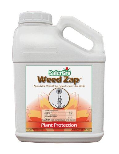 WEEDZAP有机除草剂