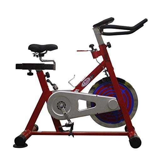 SMART BIKE | Bicicleta Indoor Spinning | volante de inercia 22 kg...