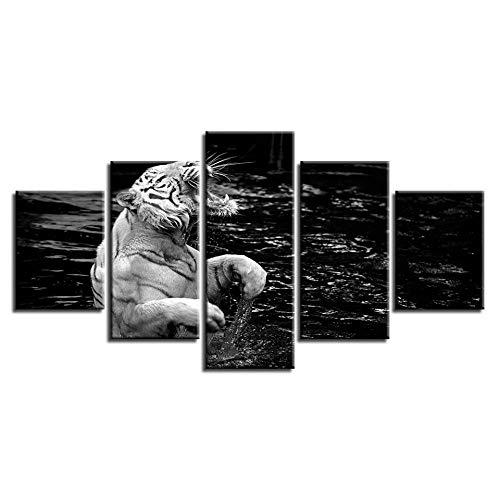 XCSBZ Leinwandbild 5 Stück Poster Modular Canvas Bilder Wandkunst 5 Stück Tiere White Tiger Paintings Moderne Wohnkultur Für Wohnzimmer Hd-Drucke,with Frame