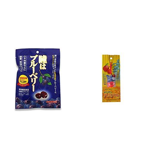 [2点セット] 瞳はブルーベリー 健康機能食品[ビタミンA](100g)・信州・飯田のシンボル 時の番人ハミパルくんストラップ