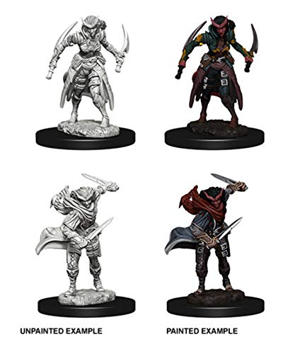 D&D Nolzurs Marvelous Unpainted Miniatures: Wave 7: Tiefling Female Rogue