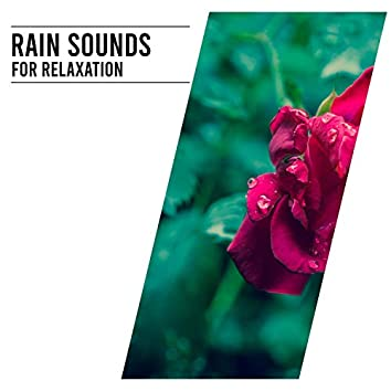15 Peaceful Sounds of Nature  Rain Sounds for Relaxation