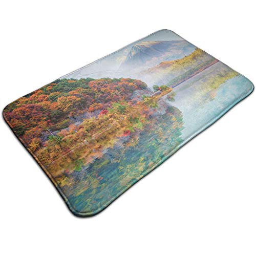 Time Photo of Mountain Fuji and The Surroundings Forest Region Foggy Climate 19.5*31.5 inch, ExtrSoft and Absorbent Rugs, Machine Wash Dry, Perfect Plush Carpet Mats for Tub, Shower,and Bath Room