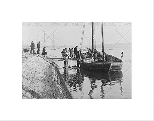 Wee Blauwe Coo Foto Zwart Wit Schotland Boot Zee Terugkeer Vissen Lerwick Omlijst Muur Art Print