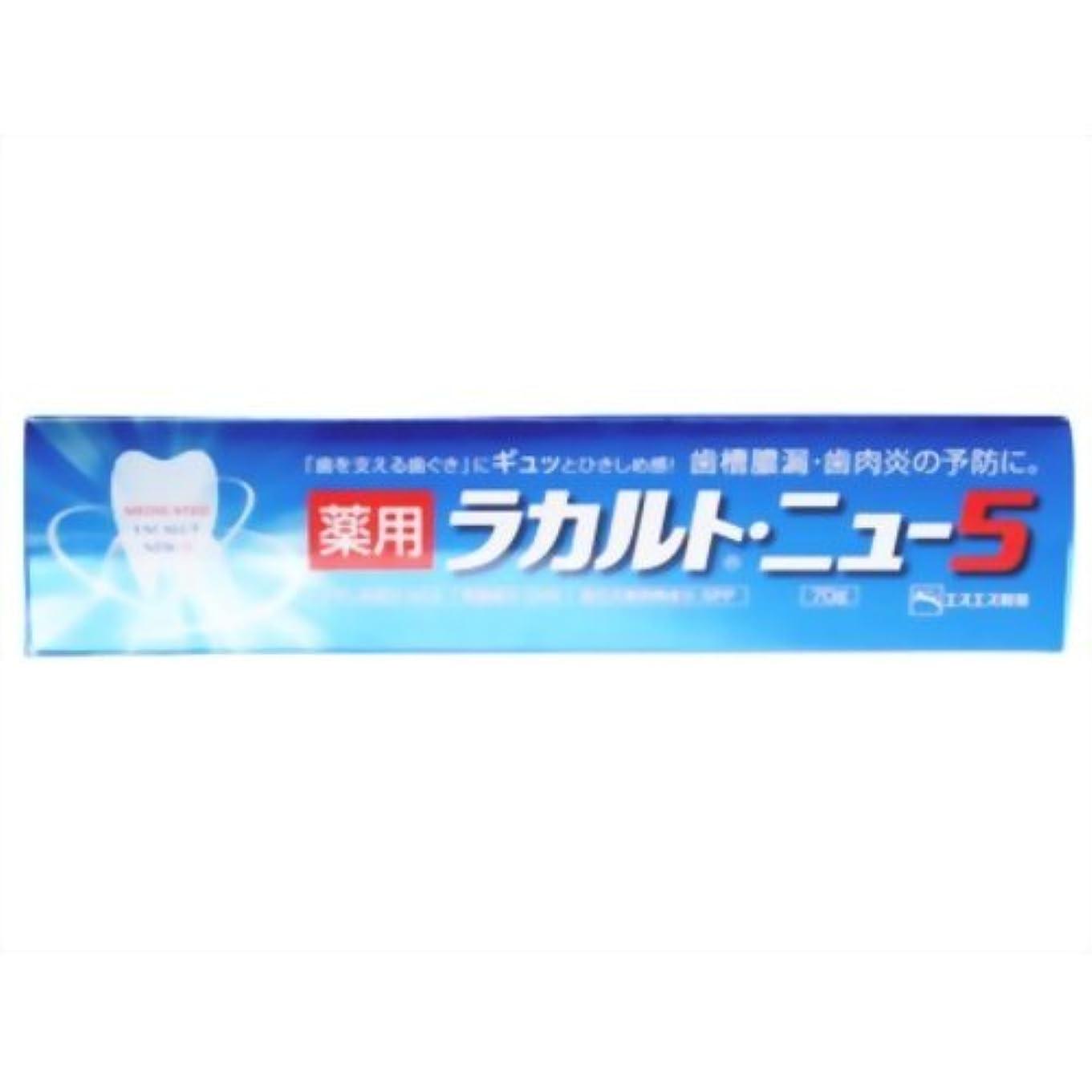 第二にゴミドライ【エスエス製薬】薬用ラカルト?ニュー5 70g ×5個セット