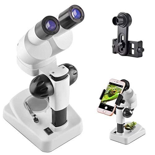 Stereo Microscope (3D)