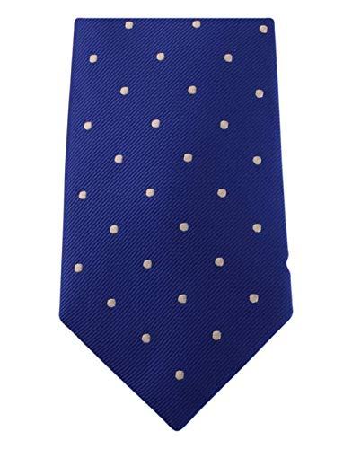 David Van Hagen Bleu/Blanc Polka Dot cravate de