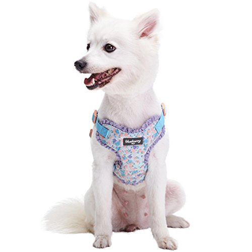 Blueberry Pet 5 Patterns Soft & Comfy Made Well Lovely Floral No Pull Mesh Puppy Dog Harness Vest in Lavender, Chest Girth 14'-16', X-Small, Adjustable Harnesses for Dogs & Cats