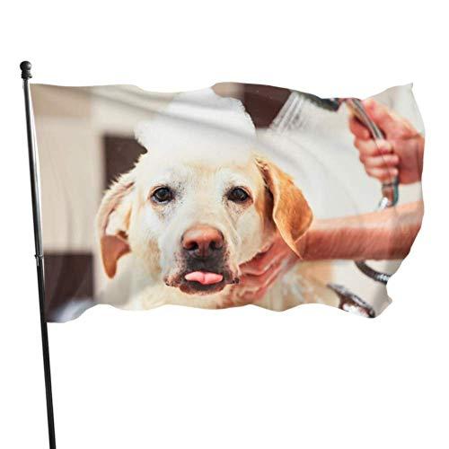 Zemivs Hund nehmen eine Dusche mit Seife und Wasser im Freien dekorative Flaggen Flaggen für Raumdekorationen 3x5 Fuß vibrierende Farben Qualität Polyester und Messing Ösen
