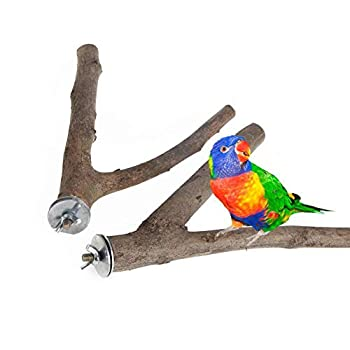 Fushida Lot de 2 perchoirs en forme de Y en bois naturel pour perroquet, perruche, perroquet