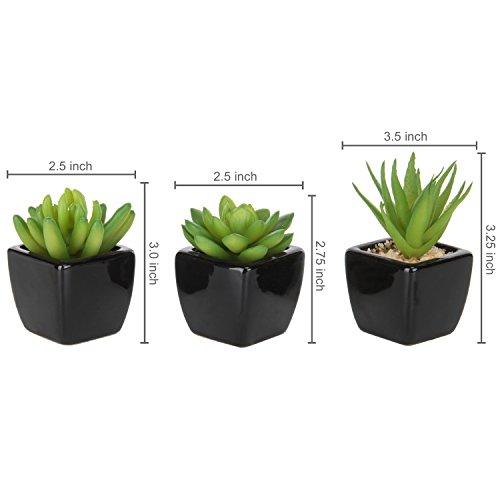 MyGift Set of 3 Modern Home Decor Mini Succulent Artificial Plants with Square Black Ceramic Pots