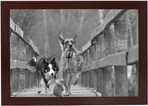 8x12 Dark Cherry Gallery Picture Frame - Wide Molding - Includes Both Attached Hanging Hardware and Desktop Easel - Display Pictures 8 x 12 Inches - Eight by Twelve