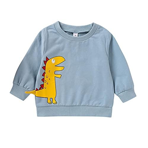 Sudadera de Navidad para niños, unisex, para bebés, niñas, niños y niñas, algodón, diseño de dinosaurio, de manga larga, de 0 meses-4 años, azul, 2-3 Años
