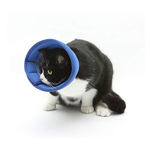 ASOCEA Soft Pet Recovery Kegel E-Kragen Bequemer Kegel Kratzbissbeständig für Katzen Welpen Kaninchen
