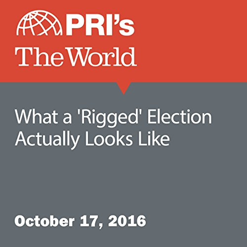 What a 'Rigged' Election Actually Looks Like audiobook cover art