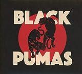 Black Pumas...
