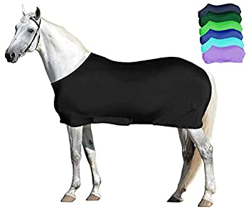 full body sleazy horse cover