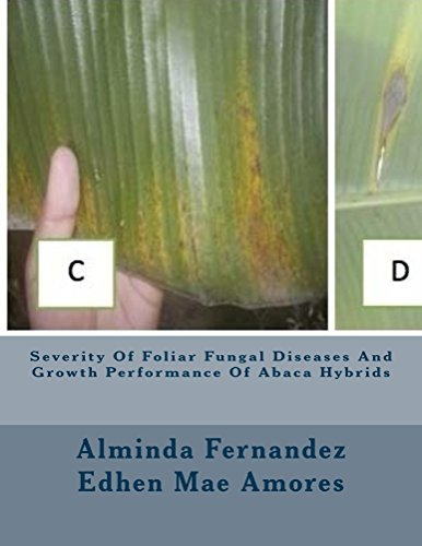 Severity Of Foliar Fungal Diseases And Growth Performance Of Abaca Hybrids